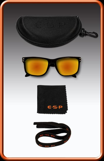 ESP Polarised Sunglasses